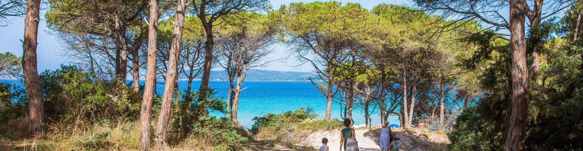 Weg unter Pinien durch weiße Sanddünen zum Strand von Maria Pia Alghero