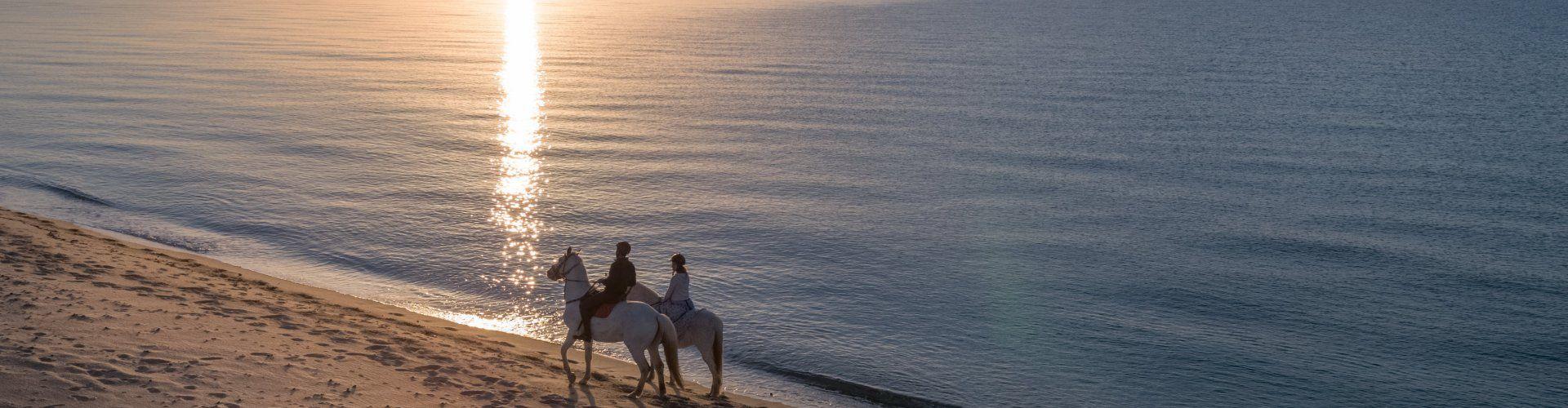Reiten an der Costa Rei im Sonnenaufgang
