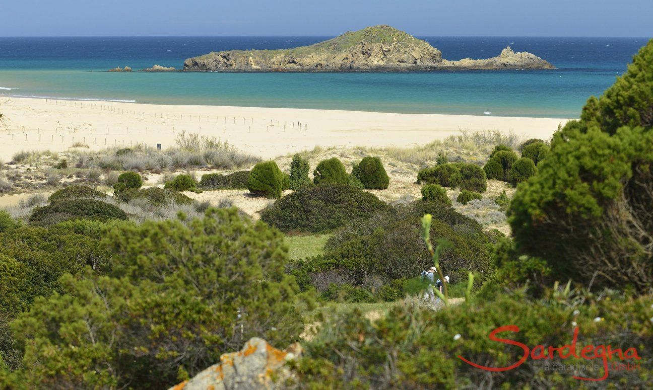 Chia | grüne Macchia |weißer Sandstrand und Insel Su Giudeu