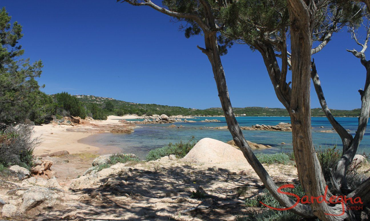 Strand Cala di Volpe, nur 16 km. entfernt