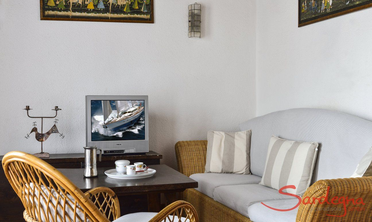 Gemütliche Sofaecke mit TV