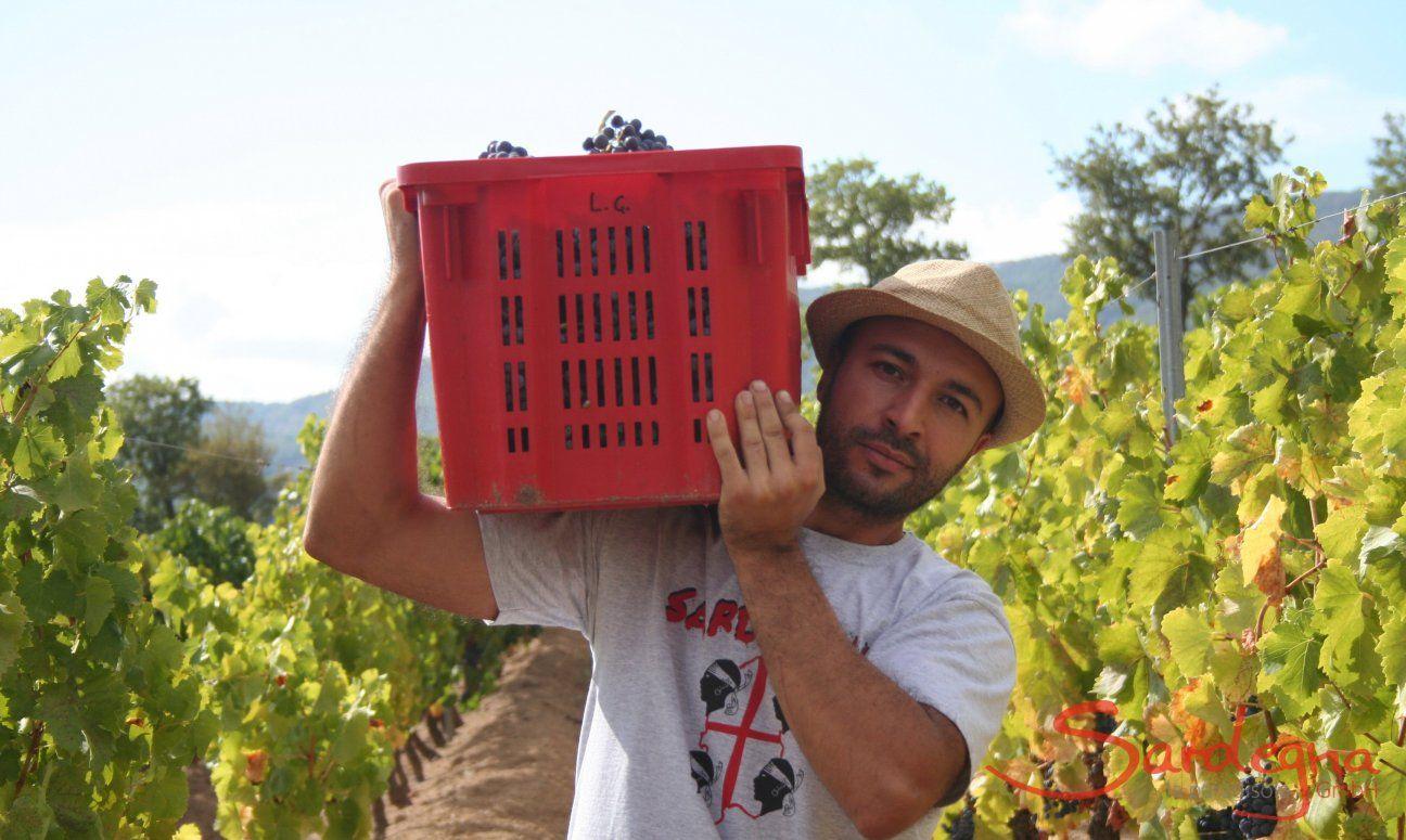 Weinhersteller