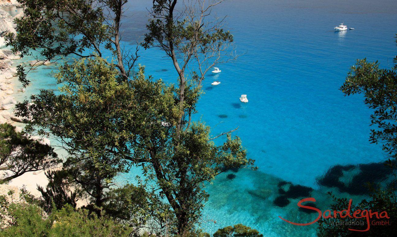 Blick von oben durch die Wacholderbäume auf das blaue Meer von Cala Goloritze; Cala Luna