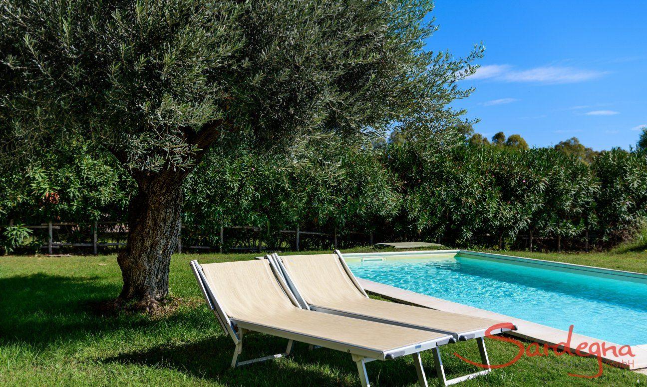 Sonnenbaden am Pool von  Villa Campidano 21