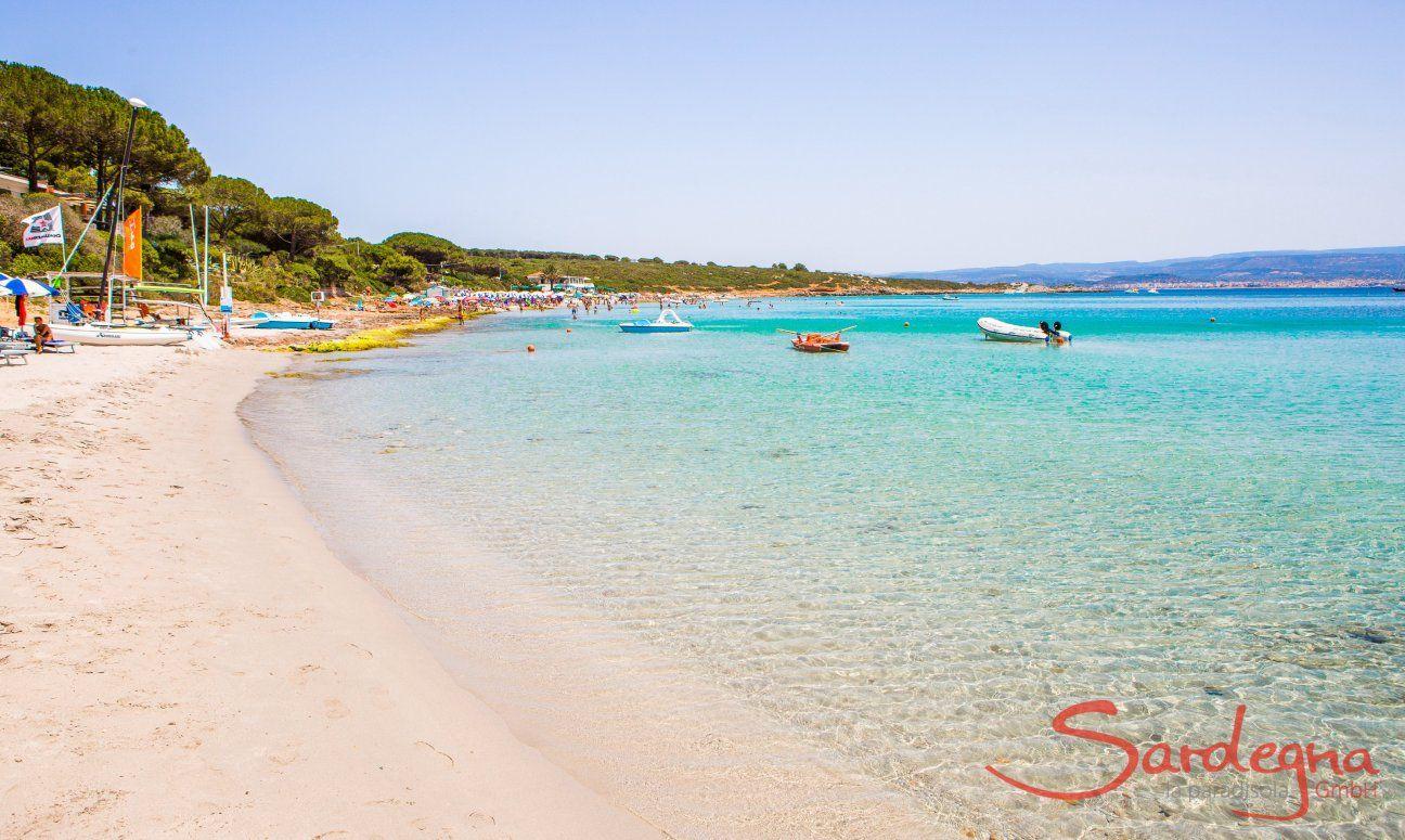 Weißer Sand und klares Wasser am Strand Le Bombarde Alghero