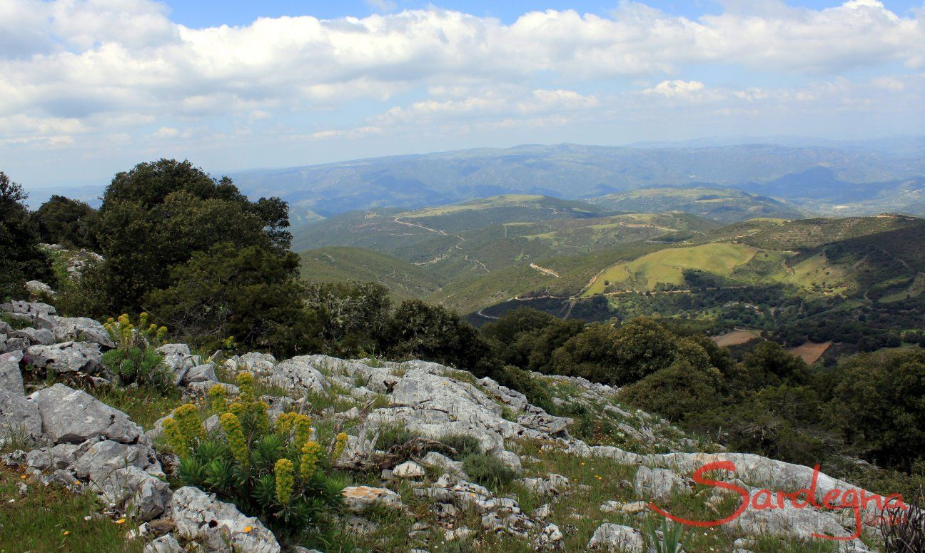 Baronie, Monte Albo