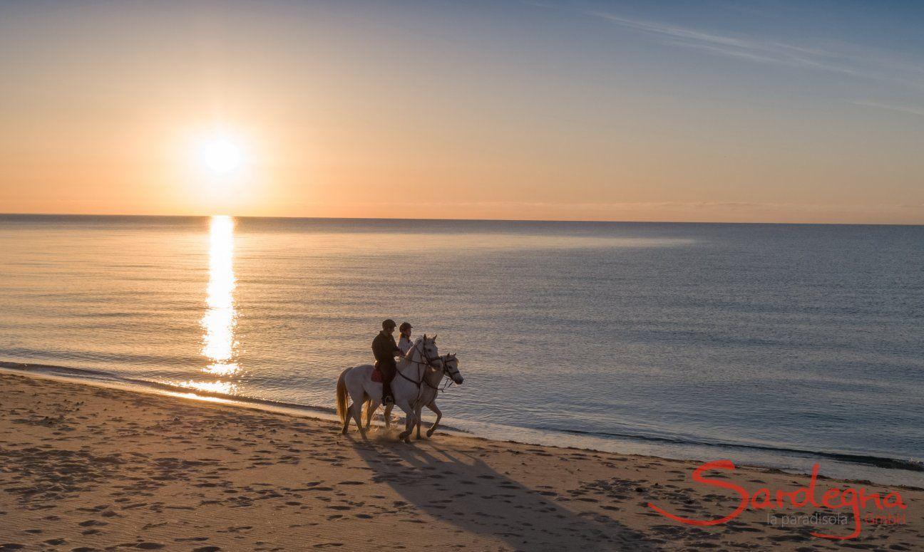 Reiten bei Sonnenaufgang am Strand Rei Sole, Costa Rei