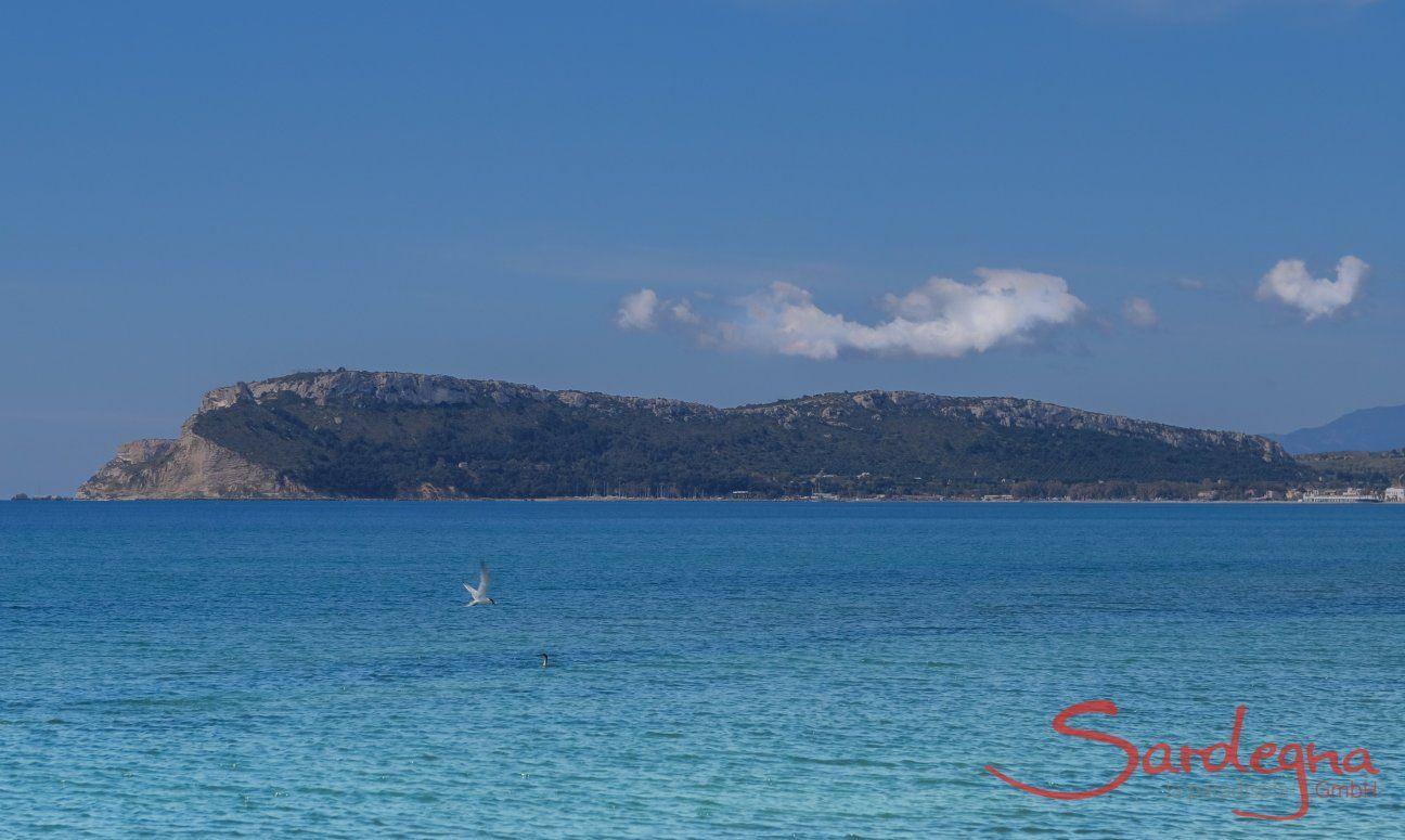 Türkis schimmerndes Meer im Golfo degli Angeli bei Cagliari