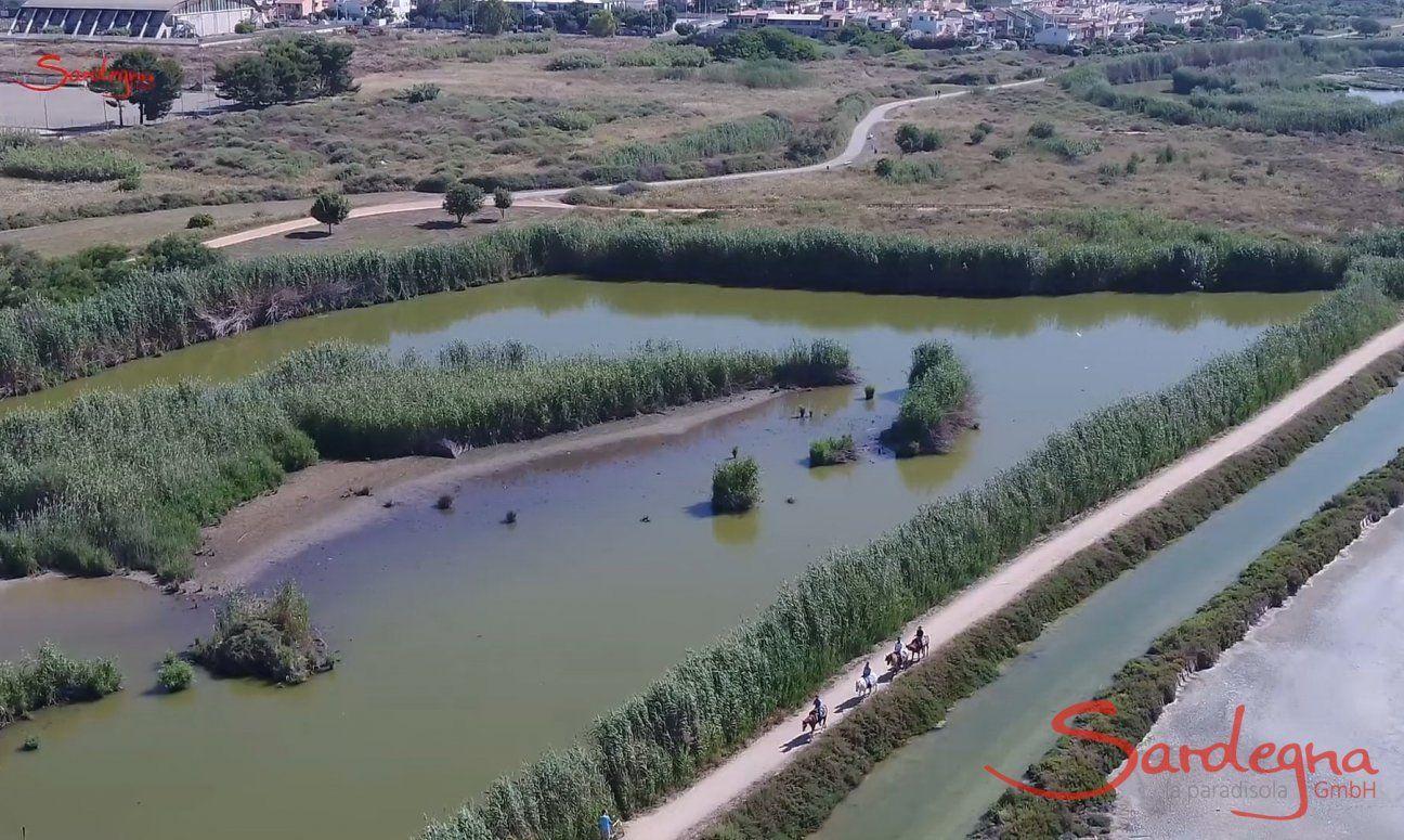 Parco di Molentargius - Cagliari