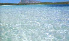 Glasklares Meer bei San Teodoro
