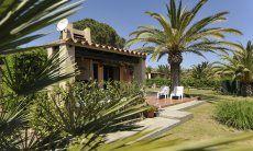 Gepflegter und großer Garten der Villa Carla