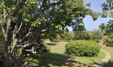 Ferienhaus eingebettet in die sardische Natur, Meloni 2 in Sant Elmo