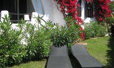 Mediterraner Garten mit Sonnenliegen