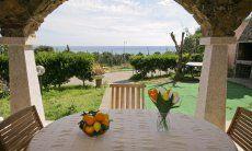 Terrasse mit Blück auf den Garten