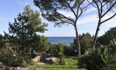 Blick vom Ferienhaus Cala Liberotto durch den Garten direkt aufs Meer