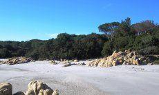 Strand in der Nähe