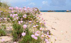 Strand Riu li Saldi - 10 Minuten mit dem Auto