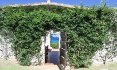 Mit Grün bewachsener Eingang von Casa 8 in Sant Elmo