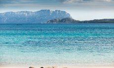 Blick auf die Insel Tavolara