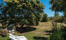 Garten mit Sonnenliegen zum Entspannen