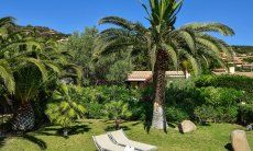 Uneinsehbarer Garten mit Palmen und Sonnenliegen