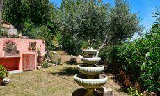 Garten mit mediterranen Pflanzen