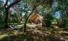 Blick auf die Lodge vom Garten