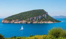 Blick auf die Insel Figarolo