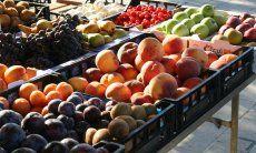 Direktverkauf von Obst