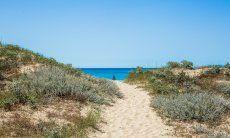 Strandzugang durch die Dünen von Geremeas