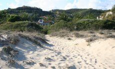 Hauslage direkt am Strand