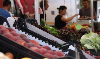 Große Auswahl an Obst und Gemüse